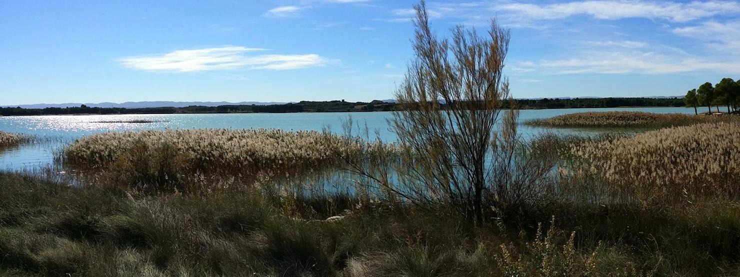 La estanca de Alcañiz