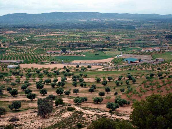 Bajo Aragón